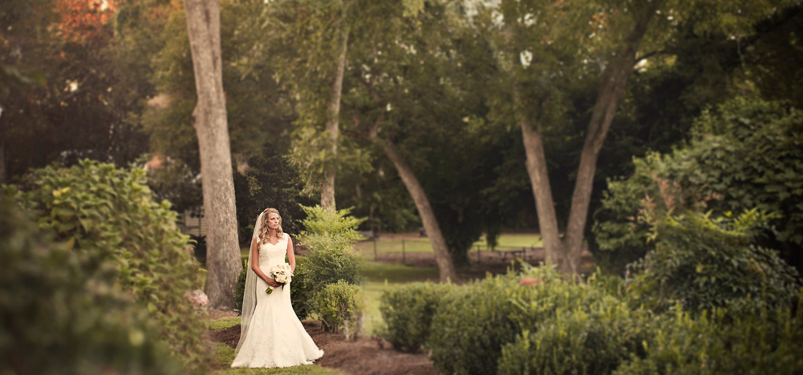 Plan the wedding of your dreams.